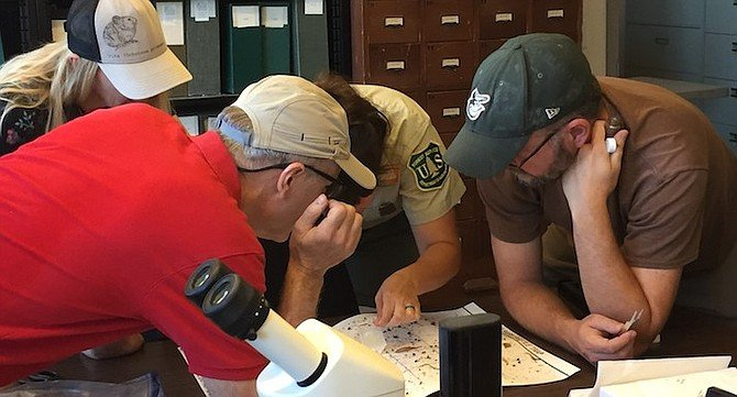 Forest Service staff and volunteers inspect trap.