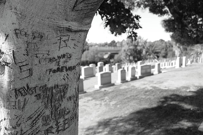 Home of Peace Cemetery in San Diego