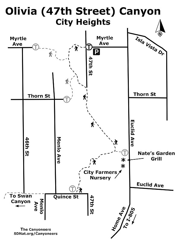 Olivia (47th Street) Canyon map