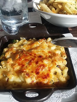 A grown-up version of mac & cheese