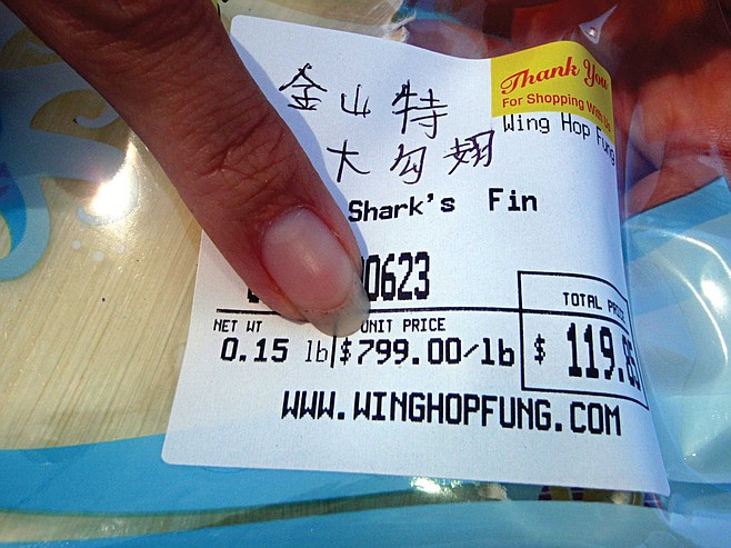 Packaged shark fin