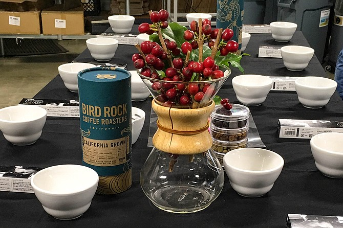 A cupping of California grown beans at Bird Rock Coffee Roasters
