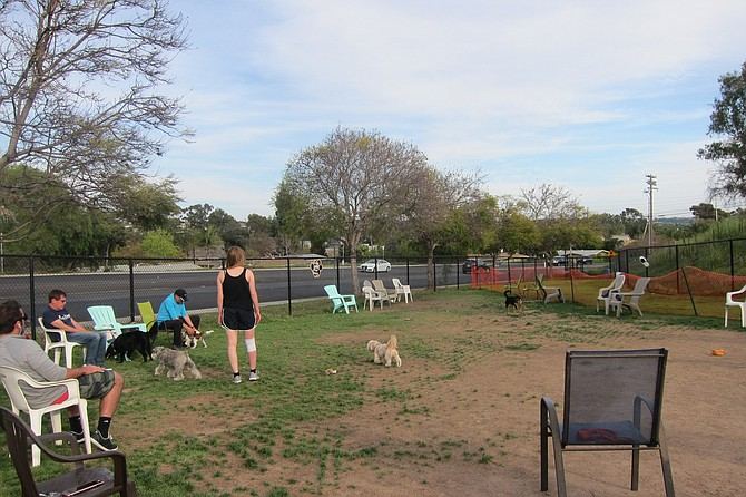 """""""Capehart was somewhat of a compromise for those wanting off-leash access at Kate Sessions."""""""