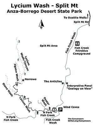 Lycium Wash map