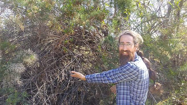 Moshe Krafchow with unpruned vegetation