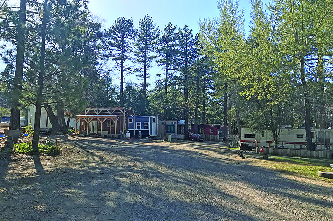 The tiny house village, protected by Jeffrey Pines.