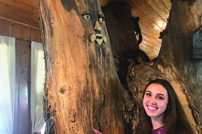 Sierra and tree friend