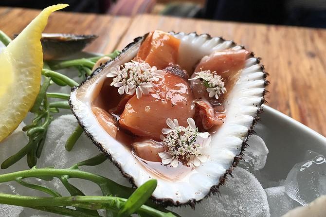 Mule paw clam escabeche with cilantro flower