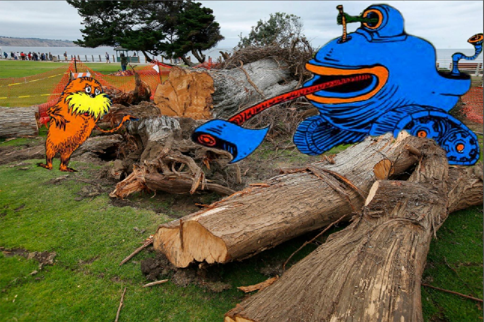 Captain of industry puts the axe to La Jolla's Lorax tree