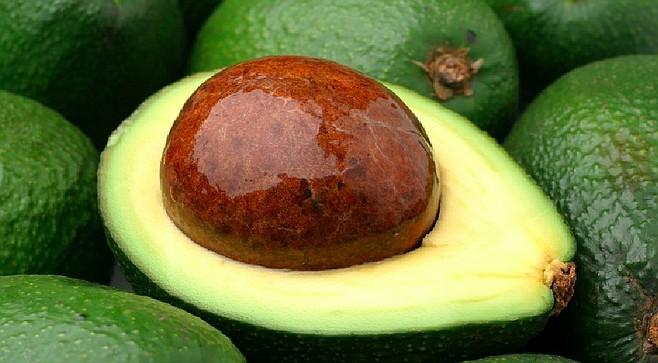 Avocado Pop-Up Museum