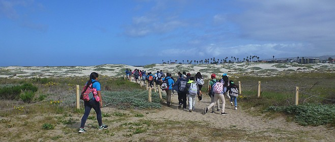 School groups often visit the Dog Beach areas that city workers spray with Roundup. Many believe the glyphosate-based herbicide causes cancer.