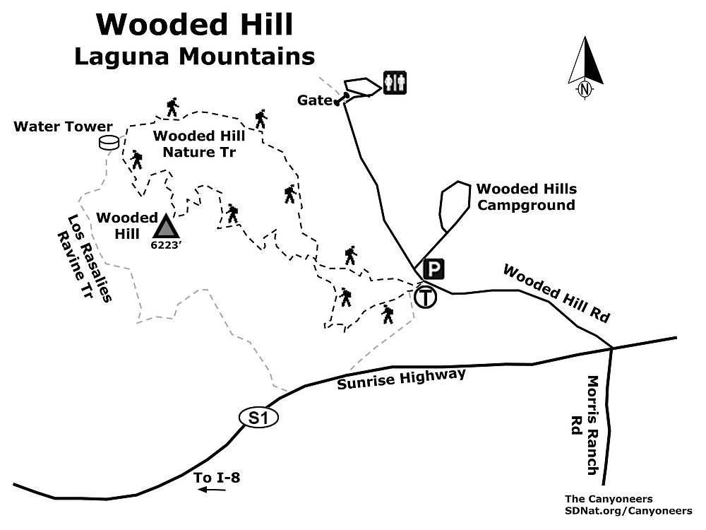 Wooded Hill map