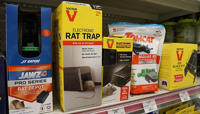 Kelly at Ace Hardware in Hillcrest recommends electronic rat traps.