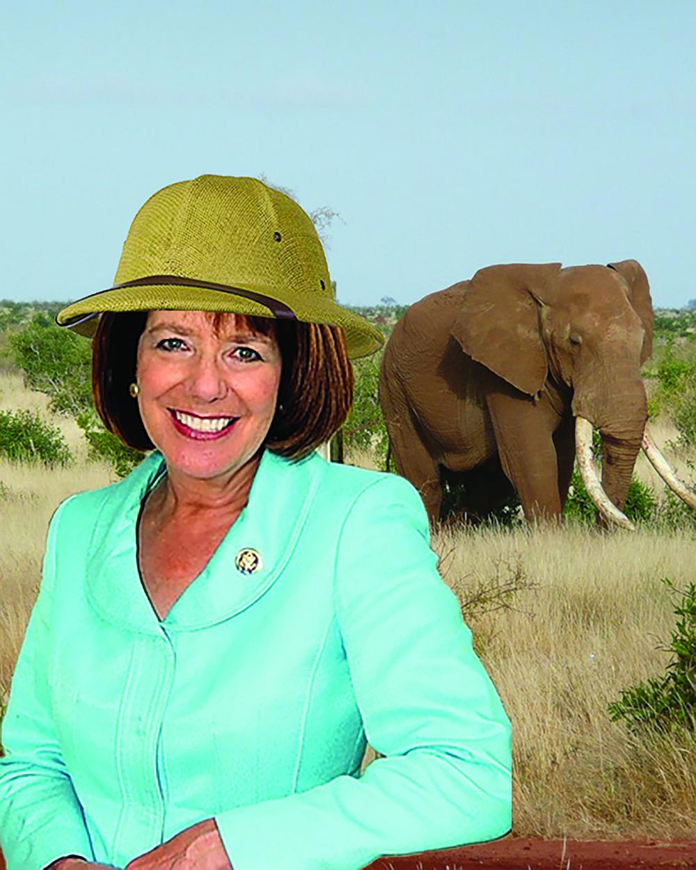 One last free-travel safari for soon-to-retire Congresswoman Susan Davis.