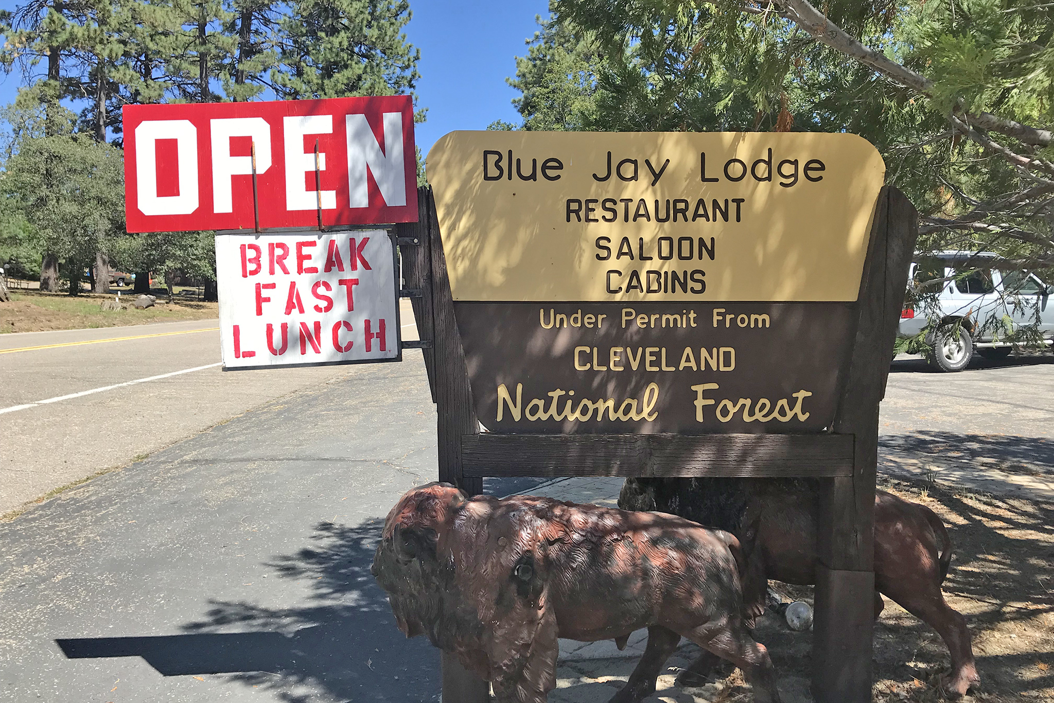 Blue Jay Lodge: right out of Davy Crockett!