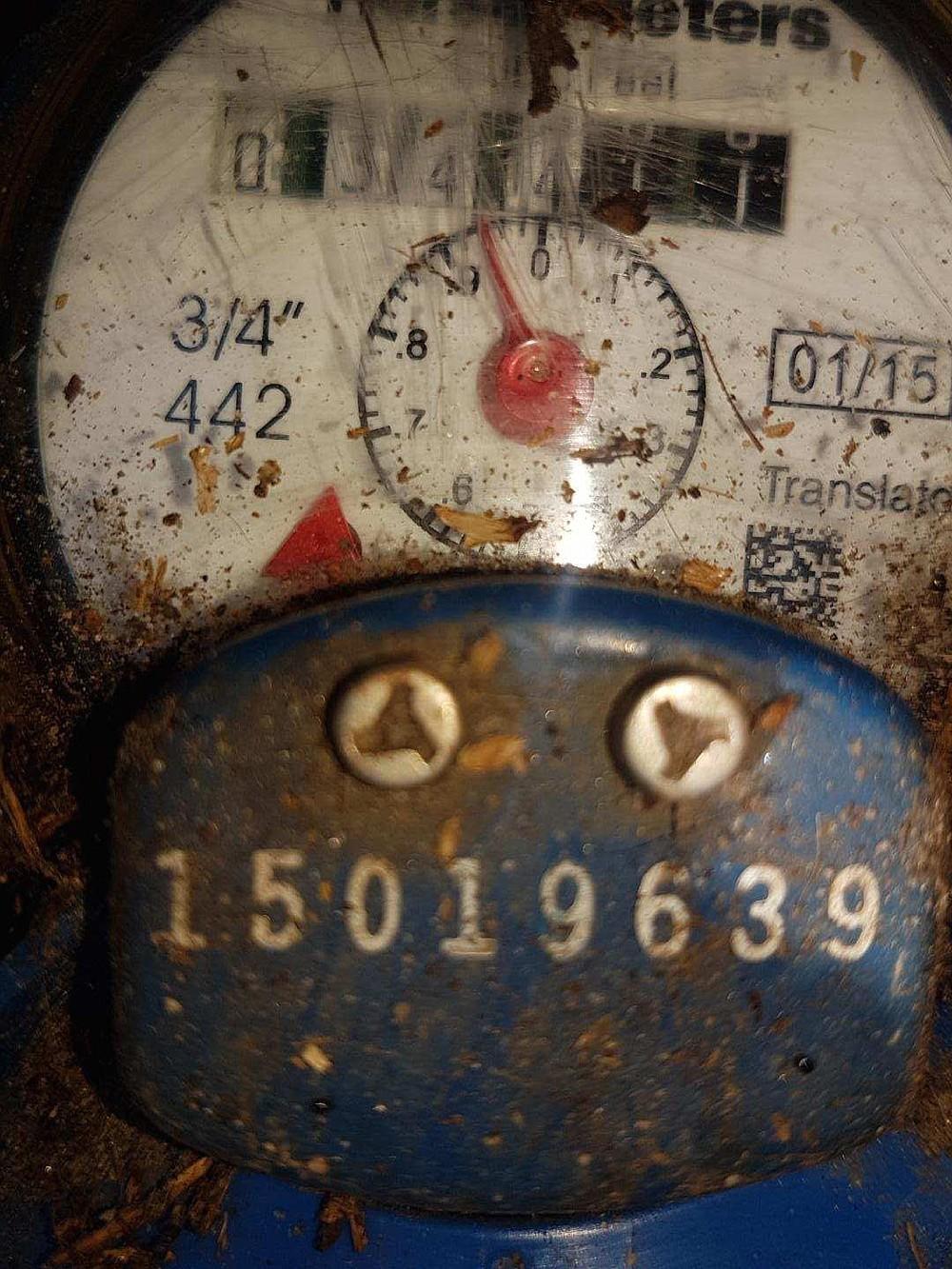 Water meter cleaned off