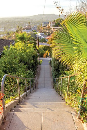 """""""You climb a total of 245 steps, interrupted by two cross streets, to reach the top of Summit Drive."""""""