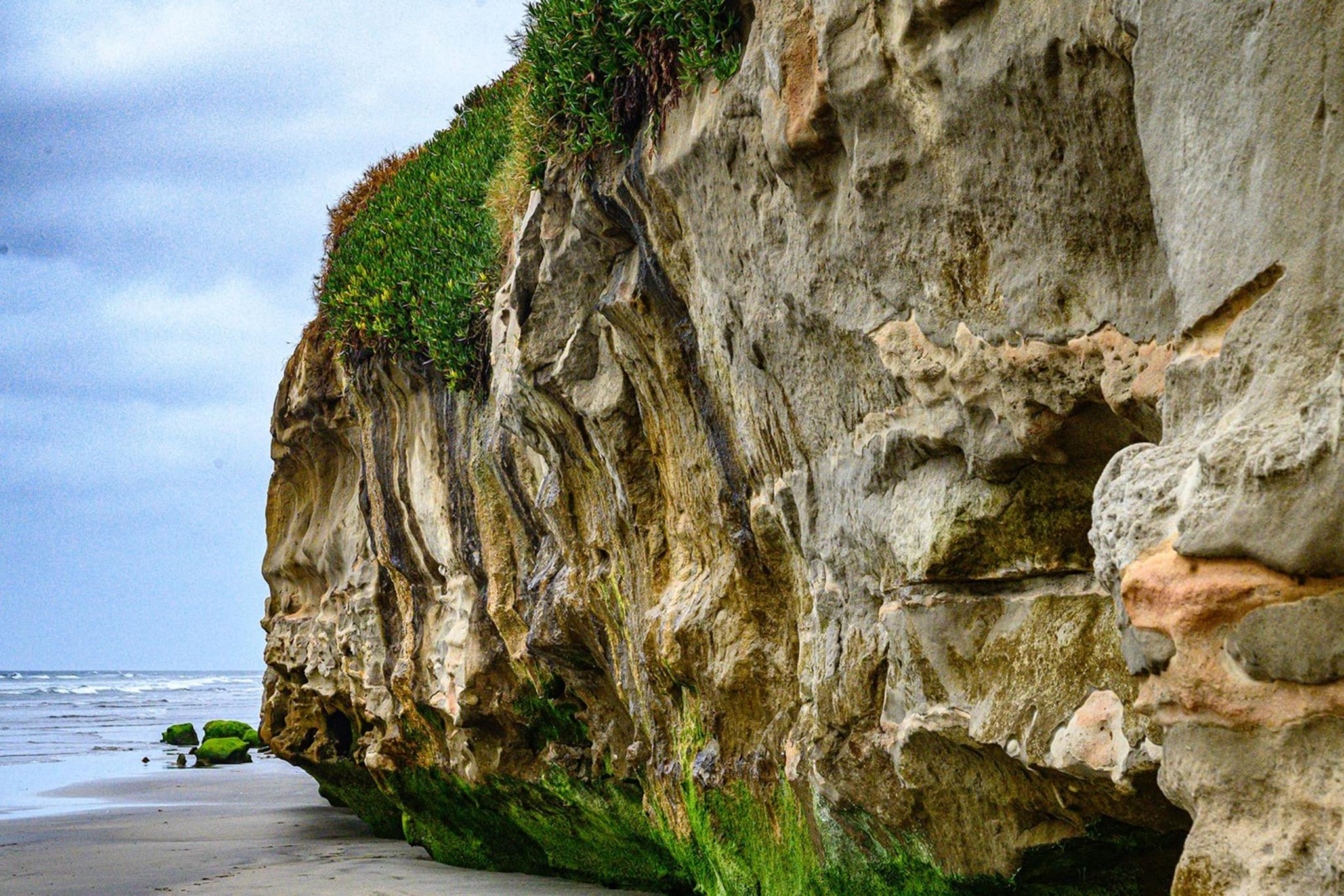 Hike Carlsbad Beach, bluffs, & seawall from Buena Vista Lagoon to North Ponto Beach