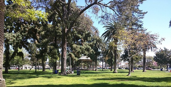 """Spreckels Park, Coronado. Coronado has """"an initial goal of planting 1,001 new trees by the end of 2024."""""""