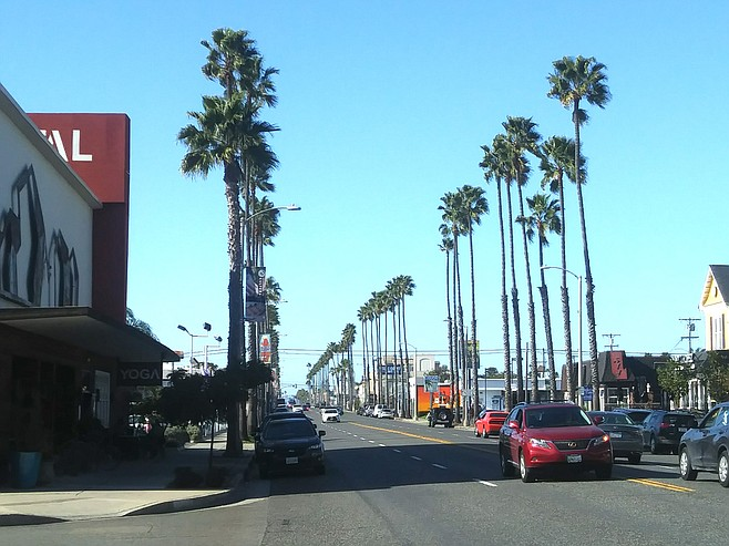 Those tall and skinny Mexican fan palms have been Oceanside's iconic trademark.