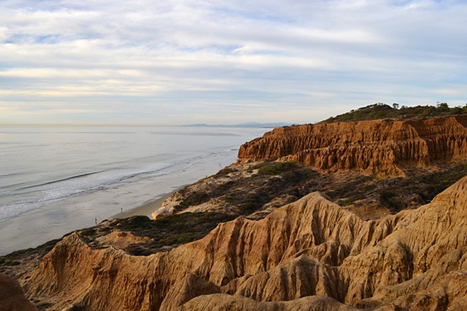 Spring at the Torrey Pines Reserve