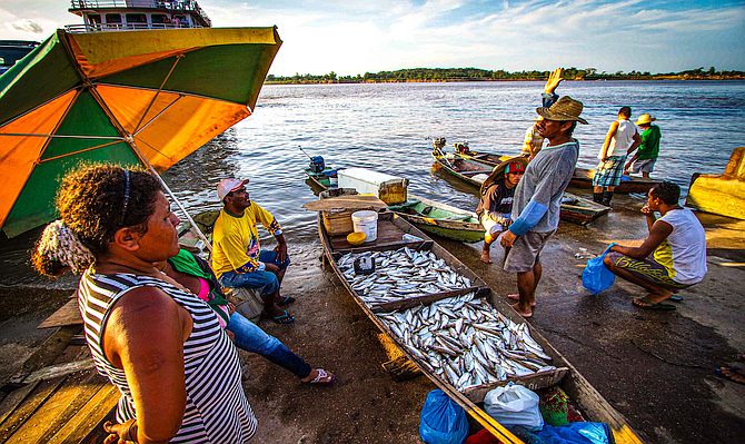 Fish for sale on the riverbank near Brazil's Meeting of Waters.