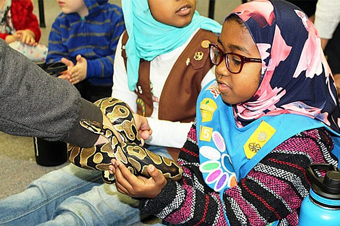 Do you have ophidiophobia or a fear of snakes? Attend the SnakeSmart workshop at Helen Woodward Animal Shelter.