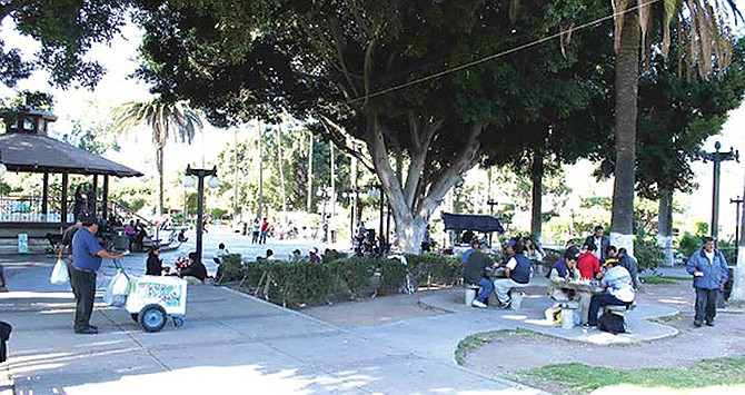 While chess players are locked down in San Diego, they can play at Teniente Guerrero park [six blocks west of Avenida Revolucion].