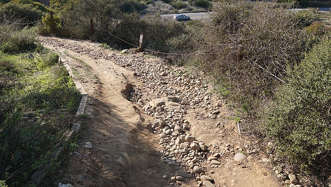 """""""Nearly every land manager in San Diego let us start getting back to the volunteer activities this winter with the exception of the city of San Diego."""""""