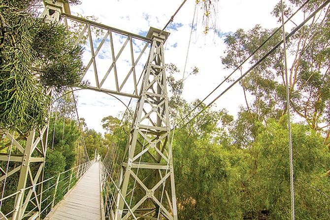Spruce Street suspension footbridge