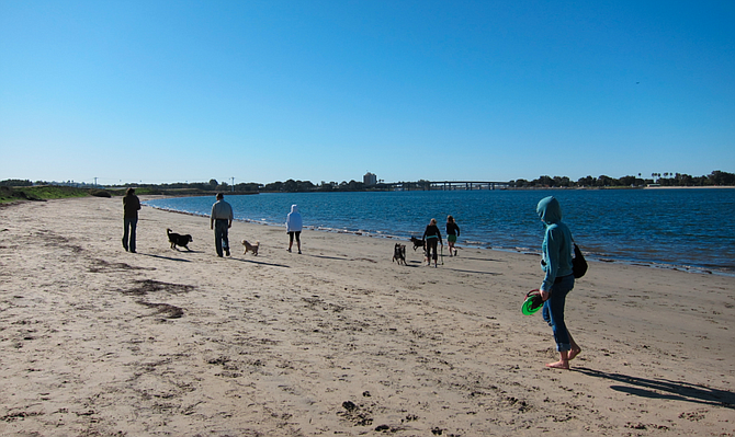 Most of Fiesta Island is now an off leash dog park.