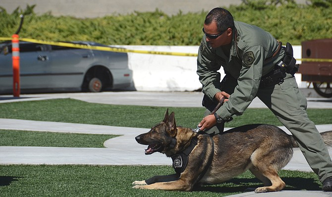 Carlsbad police used dog to track suspect in back of Jack in the Box - Image by Weaetherston 097