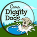 Camp Diggity Dogs