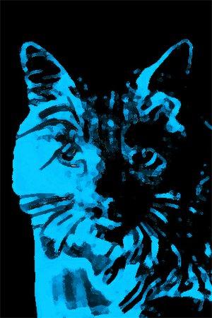 mauru's avatar