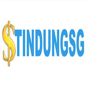 tindungsg's avatar