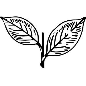 aiadmkindia's avatar