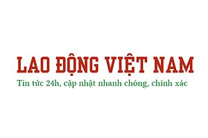 laodongvietnam's avatar