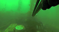 A first-person view of free diving to Tombstones, an underwater memorial off the coast of La Jolla for free divers who have died.