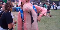 San Francisco's Outside Lands Festival 2011: strange costumes, impromptu acts.