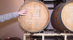 Proprietor Mark takes us on a short tour of his Blue Door Winery facility.