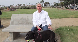 Tom Campbell talks about life with Webster, his beloved pit bull.