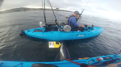 We caught this beautiful 100 pound mako off our kayaks in  La Jolla last week.