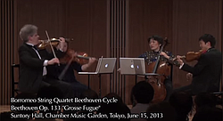 This video is titled Opus 133 but this piece is also the conclusion of Opus 130.