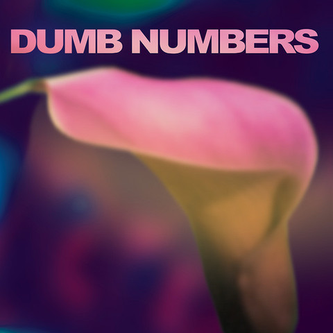 Official Dumb Numbers video, directed by David Yow