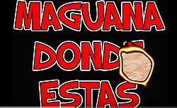 El Teacher del Rock song about La Maguana
